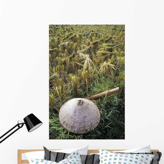 Vietnamese Conical Hat And Rice Cutting Tool In Field Wall Mural