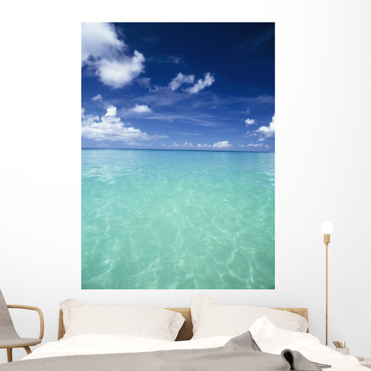 Waters Off The West Coast Of Barbados,Beach Water Ocean Horizon Wall Mural