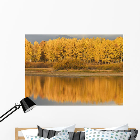 Autumn Aspens Reflected In Snake River Wall Mural