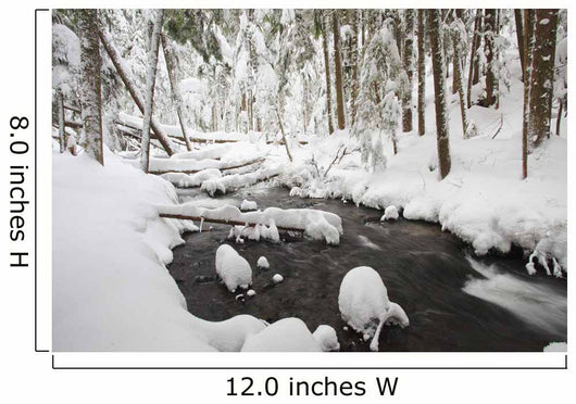 Winter Snow Along Still Creek In Mt Hood National Forest Wall Mural