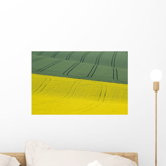 Green And Yellow Fields Wall Mural