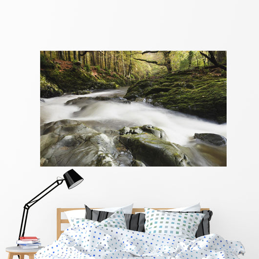 Fast Flowing Water Over Mossy Rocks In Tollymore Forest Park Wall Mural