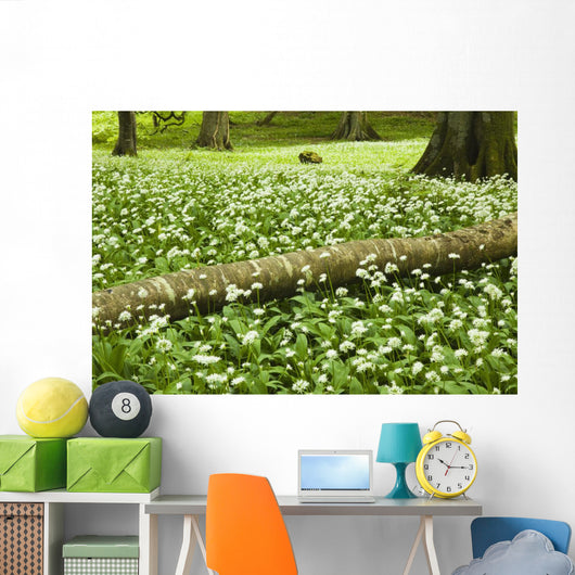 White Wildflowers Growing Amongst The Trees Wall Mural
