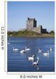 Swans On Water In Front Of Dunguaire Castle Wall Mural