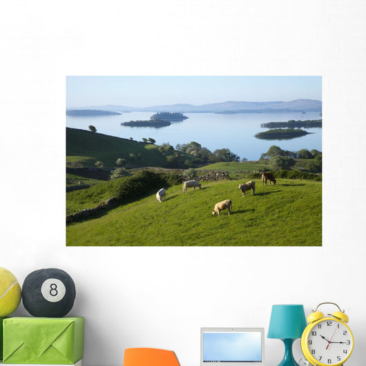 Sheep Grazing By Lough Corrib Wall Mural