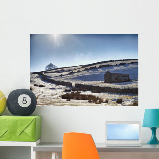 Snowy Field Wall Mural