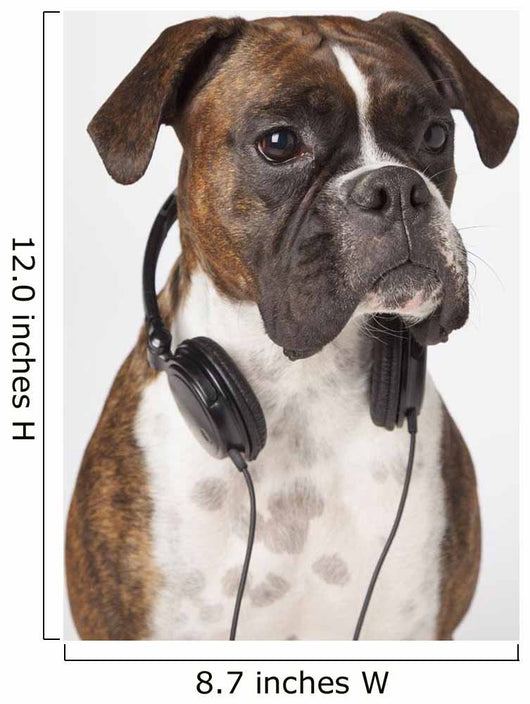 Boxer Dog With Headphones Wall Mural