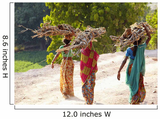 Group of women carrying firewood near Bijaipur2 Rajasthan India Wall Mural