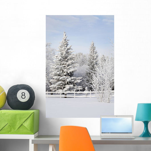 Trees Covered With Snow And Frost Wall Mural
