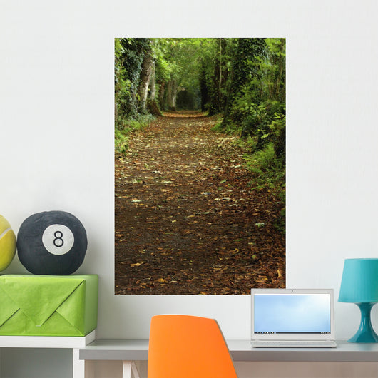 Path Through Woods Wall Mural