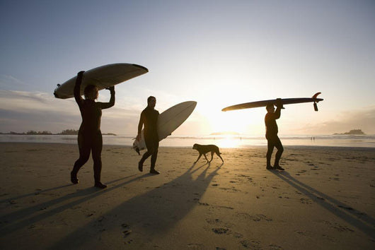 Silhouette Of Three Surfers And A Dog Wall Mural