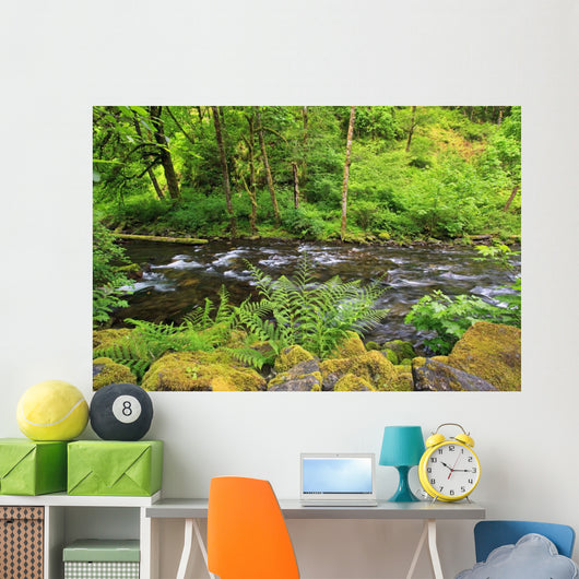 Tanner Creek In Columbia River Gorge National Scenic Area Wall Mural