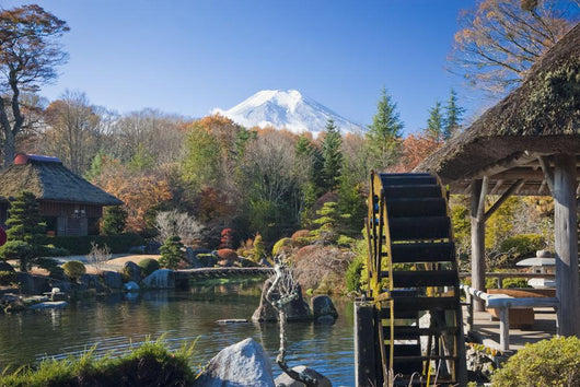 View Of Mount Fiji From A Japanese Garden Wall Mural