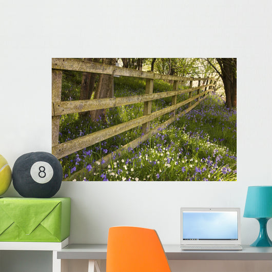 A Wooden Fence Wall Mural