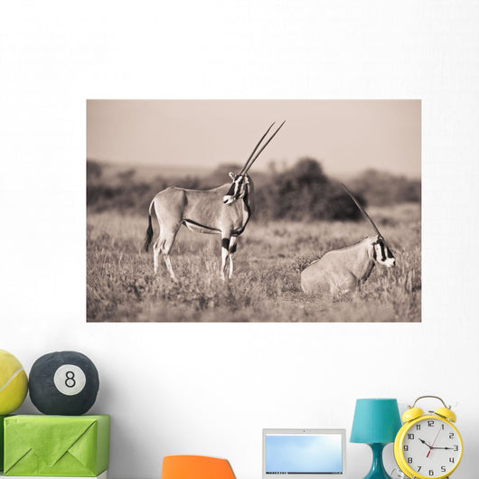 Two Antelopes In A Field Wall Mural