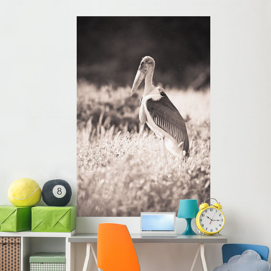A Large Bird Stands In The Grass Wall Mural