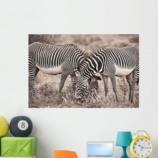 Two Zebras Grazing Together Wall Mural