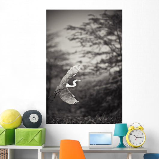 A Bird With A Large Wing Span Takes Flight Wall Mural
