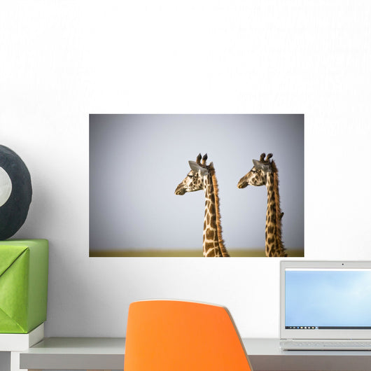 Two Giraffes Standing Side By Side Wall Mural