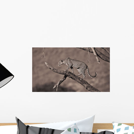 A Leopard In A Tree Wall Mural