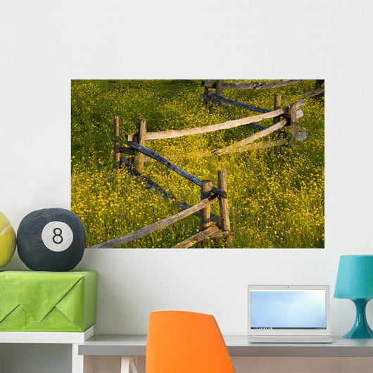 Wildflowers And A Wooden Fence At Sunset Wall Mural