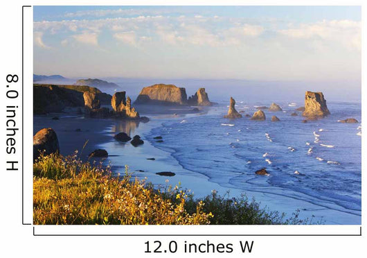 Fog Covers Rock Formations Along The Coast At Bandon State Park Wall Mural