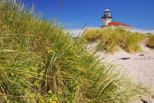 Coquille River Lighthouse Wall Mural