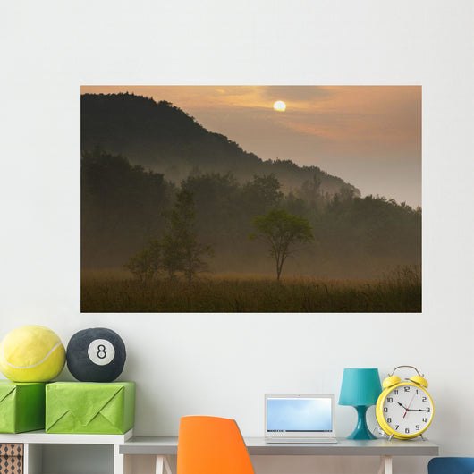 Sunrise And The Early Morning Fog Wall Mural