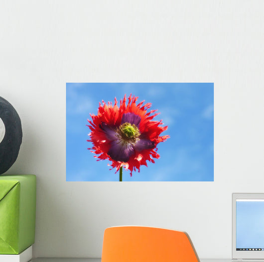 A Colorful Flower With Red And Purple Petals Against A Blue Sky Wall Mural