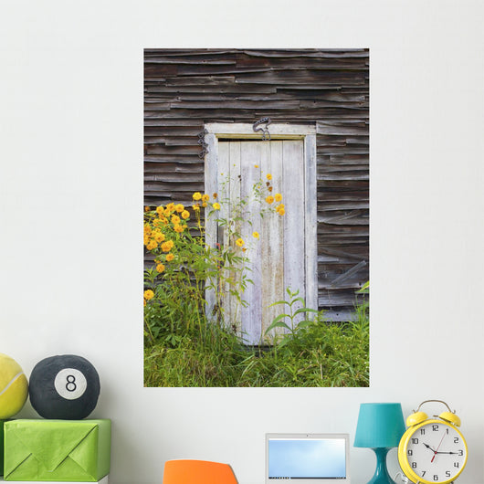 Door To An Old Shed With Wildflowers Growing Outside Wall Mural