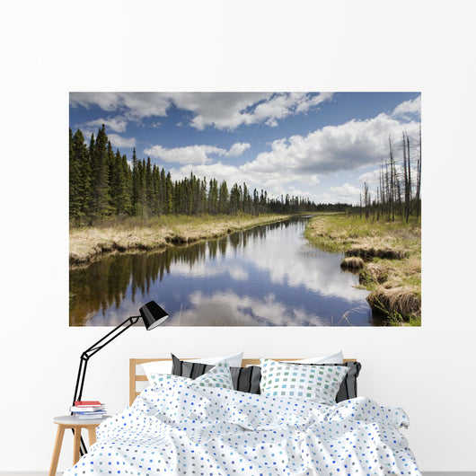 Clouds Reflected In A Tranquil River Lined With Trees Wall Mural
