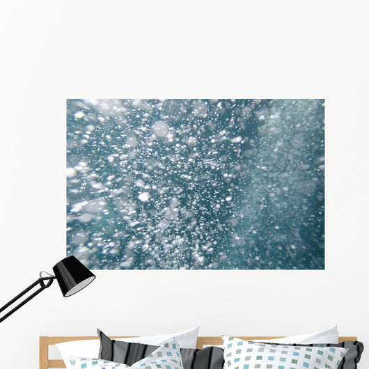 Bubbles Underwater Wall Mural