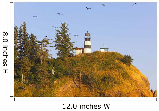Birds In Flight Over Cape Disappointment Lighthouse Wall Mural