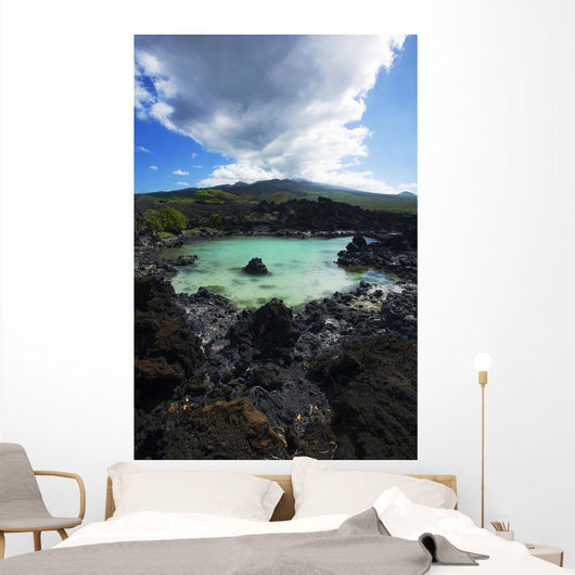 Turquoise pond Wall Mural