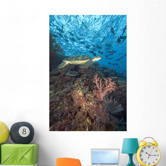 Green Sea Turtle On Reef With Soft Coral And Schooling Fish Wall Mural