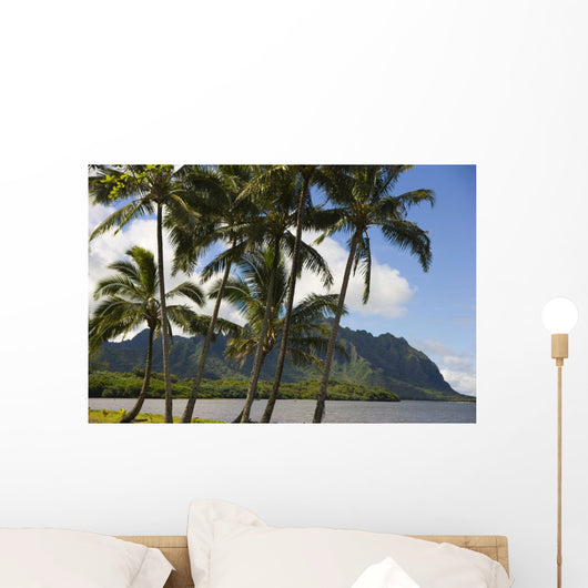 Waikane Beach Park with Pacific Ocean and Kualoa in background Wall Mural