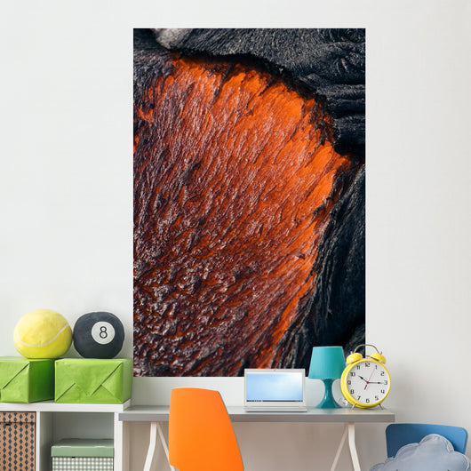 Close up of molten Pahoehoe lava Wall Mural