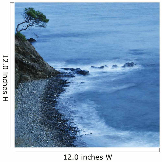 Isolated Tree On A Cliff Overlooking A Pebble Beach Along The Coast Wall Mural