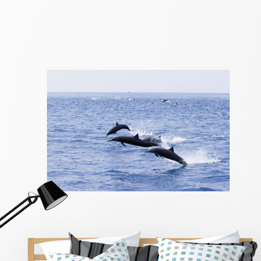 Guatemala, Puerto Quetzal, Spinner Dolphins Jumping Wall Mural