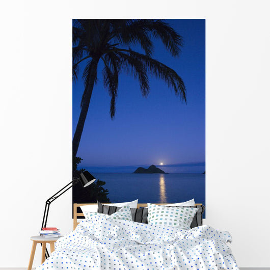 Palm tree over Pacific ocean with Mokulua island in background Wall Mural