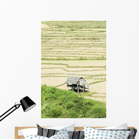 Thailand, Thatched roof shelters in terraced rice paddies Wall Mural