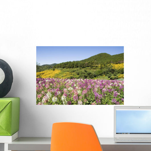 Meadow Of Colorful Flowers Wall Mural