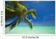 USA, Hawaii, Oahu, Mokulua island in background Wall Mural