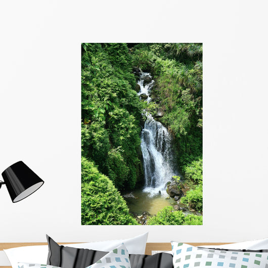 One of many waterfalls Wall Mural