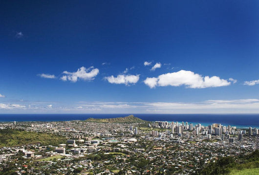 Diamond Head and Uh Manoa campus seen Wall Mural