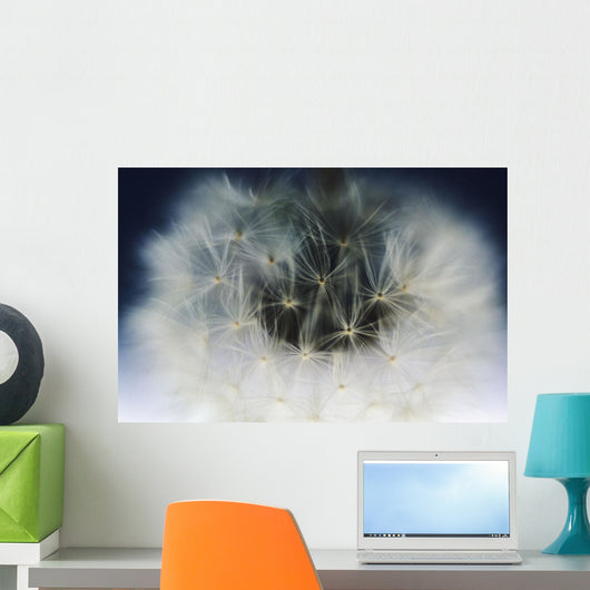 Extreme Close-Up Of Dandelion Seeds On Stem Wall Mural