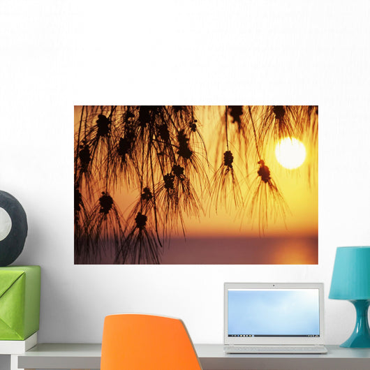 Orange Sunset Over Ocean In Background Wall Mural