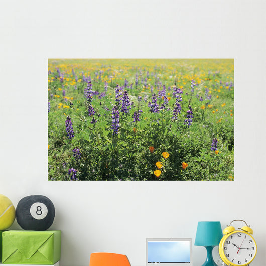 California, Beautiful Meadow Of Lupine And California Poppies Wall Mural