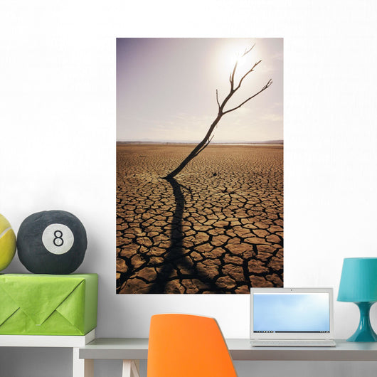 USA, California, Tree snag and cracked mud in dry lake bed Wall Mural