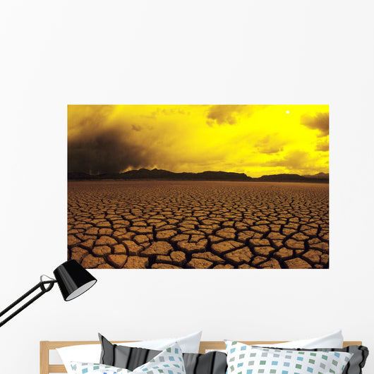 Cracked mud in dry lake bed in warm afternoon lighting Wall Mural